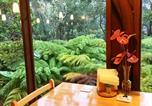 Hôtel Hawai - Volcano Inn-4