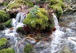 Camping avec Site nature Chazelles-sur-Lyon - Aire naturelle de Camping Les Cerisiers-4
