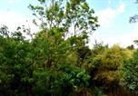 Location vacances Anuradhapura - Avinro Garden-3
