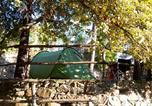 Camping Ligurie - Camping La Pineta-3