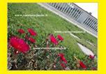 Location vacances Siniscola - Agriturismo Cuccuru e' Jana-3