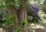 Location vacances Sottrum - Buntes Moor-4