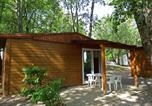 Camping Berrias-et-Casteljau - Camping les Blaches Locations-1