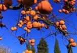 Location vacances Greve in Chianti - Agriturismo Fattoria Santo Stefano-4