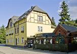Hôtel Olbersdorf - Landguthotel Cafe Meier-3
