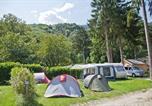 Camping avec Site nature Doussard - Camping des Neiges-3