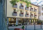 Hôtel Birgland - Hotel Brunner-1
