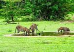 Camping avec Spa & balnéo Sri Lanka - Yala Leopard Camping-1