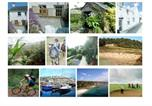 Location vacances St Austell - Yet Gwynn-3