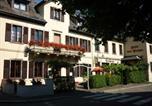 Hôtel Dorlisheim - Hôtel des Vosges-1