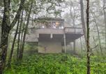 Location vacances Appomattox - Wintergreen Resort Cabin about half Mi to Ski Mountain!-4