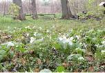 Location vacances Trenton - Wildflower Cottage-2