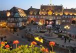 Hôtel Dieffenthal - Hotel Restaurant Le Brochet-4