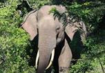 Camping avec WIFI Sri Lanka - Rivosen Camp Yala Safari-2