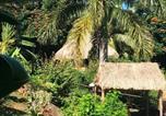 Hôtel Fidji - Palmlea Farms Lodge & Bures - Villas