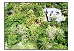 Location vacances Dambulla - Sun and Green Eco Lodge-4