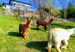 Location vacances Sohren - Ferienwohnung Alpaka Blick-2