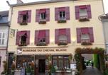 Hôtel Brosses - Auberge du Cheval Blanc-1