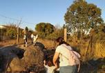 Location vacances San Pablo de los Montes - Finca - Granja &quote; El Chaparral&quote;-1
