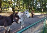 Camping  Acceptant les animaux Belgique - Camping De Schuur-4