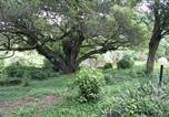 Location vacances Pietermaritzburg - Glengarth Cottages-4