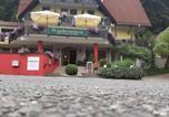Hôtel Wiesenttal - Hotel Landgasthof Frankenstern-1