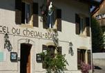 Hôtel Fontainemelon - Hotel du Cheval Blanc-2