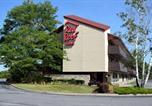 Hôtel East Syracuse - Red Roof Inn Syracuse-1