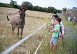 Camping avec Hébergements insolites Pays de la Loire - Flower Camping Le Petit Paris-3
