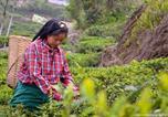 Villages vacances Kalimpong - Goomtee Tea Garden Retreat-3