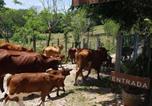 Location vacances Palenque - Casa sol-4