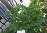 Location vacances Asciano - El Giardino delle Rose.....-1