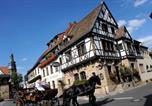 Hôtel Grünstadt - Weinkastell Zum Weissen Ross-3