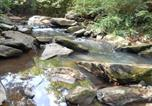 Location vacances Atlanta - Stone Creek Lodge On 500 Of Rushing Sope'S Creek-1