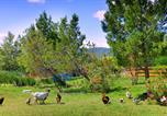 Camping avec Bons VACAF Laroque-des-Albères - Camping La Peiriere-4