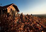 Location vacances Ribnik - Vineyard Cottage Brodaric-4
