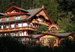 Hôtel Dobbiaco - Parkhotel Sole Paradiso-2