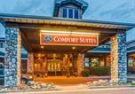 Hôtel Duluth - Comfort Suites Canal Park-1