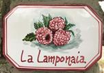 Location vacances Santa Fiora - La Lamponaia-4