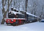 Location vacances Etang-sur-Arroux - Le Train Des Reves-1