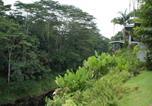 Location vacances Hilo - Wailele Nalo Home-4
