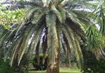 Location vacances Magliano in Toscana - La Palma-1