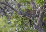 Camping Sri Lanka - Wild Trails Yala Tented Safari Camp-4