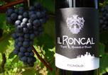 Location vacances Cividale del Friuli - Il Roncal Wine Resort-2