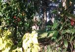 Location vacances Ciampino - Residence Paolina-3