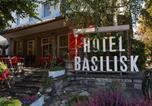 Hôtel Birsfelden - Hotel Basilisk-2