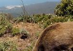 Location vacances Villacidro - Agriturismo Gragonti-4