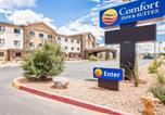Hôtel Page - Comfort Inn & Suites Page at Lake Powell-1