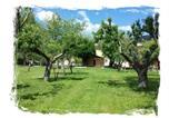 Location vacances Pescorocchiano - Azienda Agrituristica Tenuta Valviola Amiternum-2