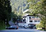 Hôtel Willingen - Hotel-Pension zum Paradies-3